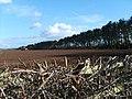 Ploughing Field - geograph.org.uk - 363919.jpg