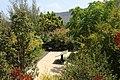 Poison garden in the Ethnographic Museum of Guimar.jpg
