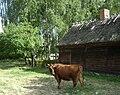 Poland. Sierpc. Open air museum, (Skansen) 004.jpg