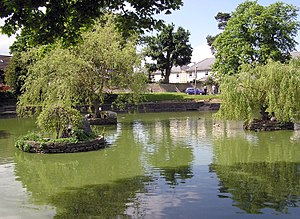 Winterbourne, Gloucestershire - The village pond, home to ducks and swans. Shelter for the ducks is provided on the islands.
