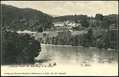 Postcard of Fala Castle by 1915.jpg