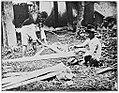 Preparing abaca 2 (c. 1900, Philippines).jpg