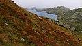 Primi colori autunnali al lago Superiore.jpg