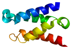 Protein PSIP1 PDB 1z9e.png