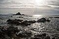 Punta Falcone 018.jpg