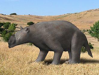 Diprotodontidae - Image: Pyramios BW