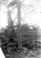 Queensland State Archives 3170 Boorte Well c 1910.png