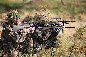 Reserve Defence Forces - Irish Army Reserve assessment training