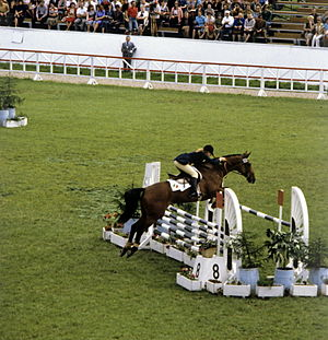 Equestrian at the 1980 Summer Olympics - Team silver medalist Anna Casagrande of Italy in the eventing competition