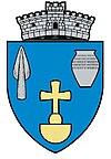 ROU MS Albesti CoA.jpg