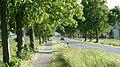Radweg nach Rheden - panoramio.jpg