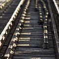 Railroad (2636985910).jpg