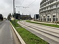 Rails Tramway IdF Ligne 6 Avenue Villacoublay - Meudon (FR92) - 2021-01-03 - 2.jpg