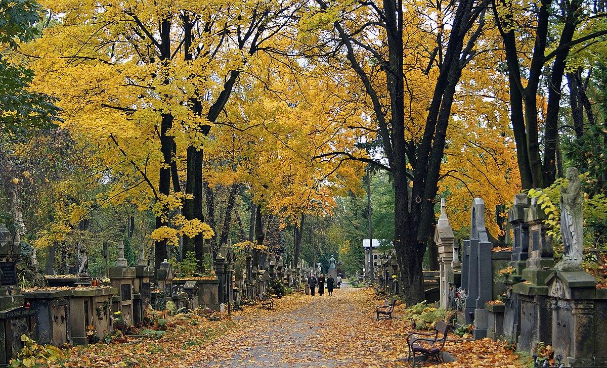 Cmentarz Rakowicki – Wikipedia, wolna encyklopedia