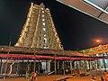Ranganathaswamy Temple, Srirangam (49997987691).jpg