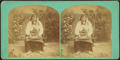 Red Dog Sioux Chief, from Robert N. Dennis collection of stereoscopic views.png