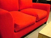 Couches come in a variety of colors, patterns, and materials (two-seater model)