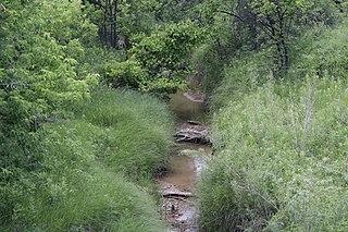 Redwater Creek