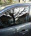 Reflection in automobile glass November 2012.jpg