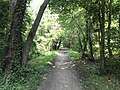 Reformatory Branch Trail at MA Route 62, Bedford MA.jpg