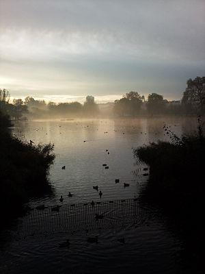 Regent's Park - Regent's Park Lake