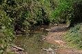 Rema-Kalenga Wildlif Sanctuary 2.jpg