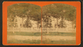 Residence of Alivia Thompson, Harmony, McHenry County, Illinois, from Robert N. Dennis collection of stereoscopic views.png