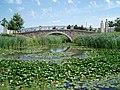 RichmondGreen3.jpg
