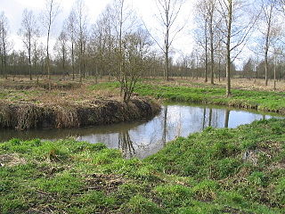 River Blackwater, Essex
