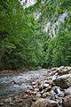 River Mali Rzav and Visocka Banja Spa in Serbia - 4283.NEF 23.jpg