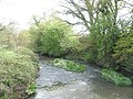 River flowing past Haben Farm Bridge - geograph.org.uk - 786818.jpg