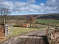 Road to Low Coombs Farm - geograph.org.uk - 725383.jpg