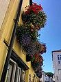 Rock-cornwall-england-tobefree-20150715-140705.jpg