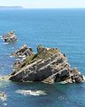 Rocks near Lulworth Cove.JPG