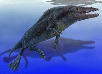 Archaeoceti - Reconstruction of Rodhocetus (Protocetidae)