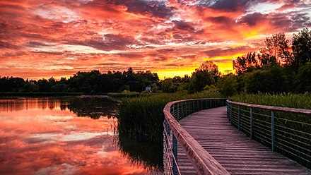 Rouge National Urban Park is a national park located in the eastern portion of the city. Rouge Beach Pond Boardwalk sunrise.jpg