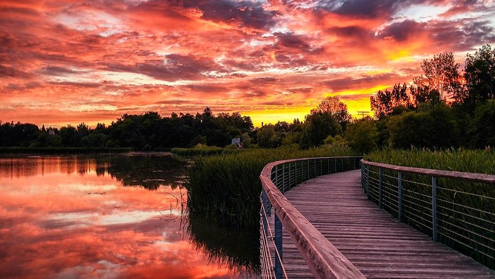 Rouge Beach Pond Boardwalk sunrise