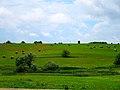 Round Bales - panoramio (1).jpg