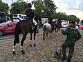 Royal Guards bangkok IMG 7010.JPG