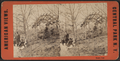 Rustic rest, from Robert N. Dennis collection of stereoscopic views.png