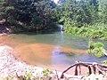 Rzeka Biała, okolice Kuźniczki - panoramio.jpg