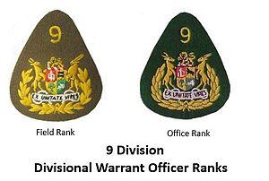 SADF 9 Division Warrant Officer Insignia