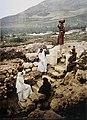 SAMARITANS AT WORK NEAR NABLUS. COLOR PHOTO FROM THE LATE 19TH CENTURY TAKEN BY FRENCH PHOTOGRAPHER, BONFILS. צילום צבעוני מסוף המאה ה19 של הצלם הצרפתי בונפיס אשר תעד מנופי אר.jpg