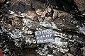 S of Mt Jackson mafic breccia dyke in felsic breccia.jpg