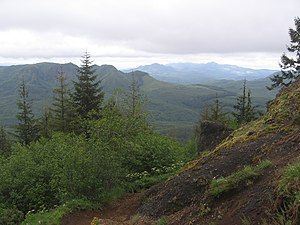 Oregon Coast Range - Image: Saddle Mountain (Oregon)