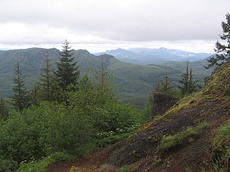 Saddle Mountain bei Astoria in der Northern Oregon Coast Range