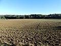 Saint-Jean-d'Eyraud Petit Caville paysage (2).jpg