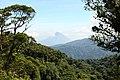 Santa Elena Reserve 10.jpg
