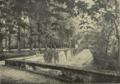 Saut du loup dans le parc en 1913.png