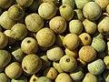 Sclerocarya birrea - fruits (8626399417).jpg